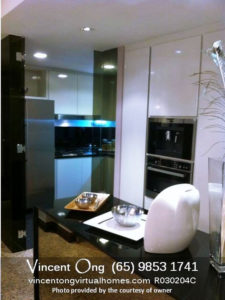 Riverplace @ Havelock Road Penthouse 4BR for Sale and Rent call 6598531741