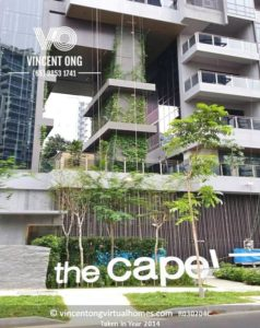 The Cape for Sale or Rent, call 6598531741